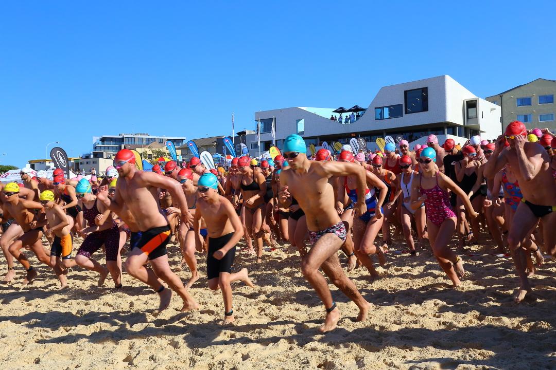 North Bondi Surf Club 2016 Classic Ocean Swim Global Swim Series